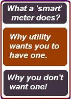 banner asks (1) what does a smart meter do?, (2) why your utility wants you to have one, and (3) why you don't want one!