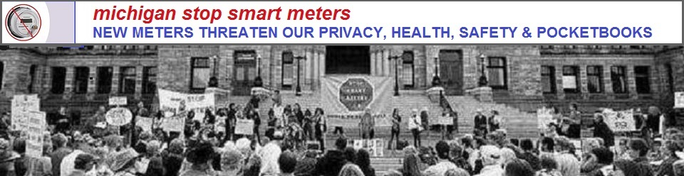 michiganstopsmartmeters