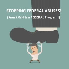 Stopping Federal Abuses